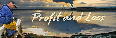 Profit and Loss Banner Image