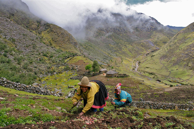 Andes, Peru ... Harvest Background Images